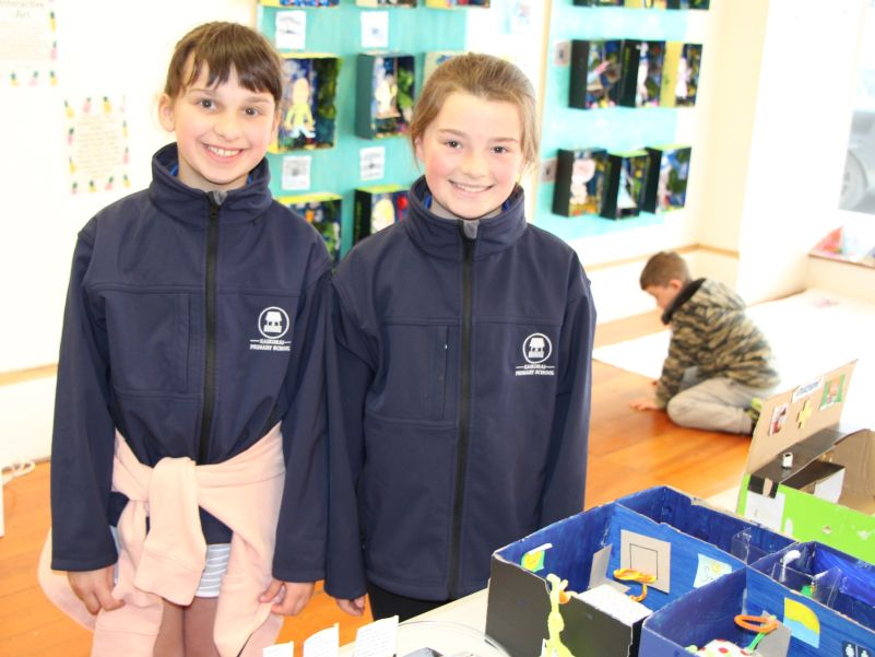 Imaginative hospital initiatives from pupils